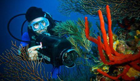 Photographer underwater.