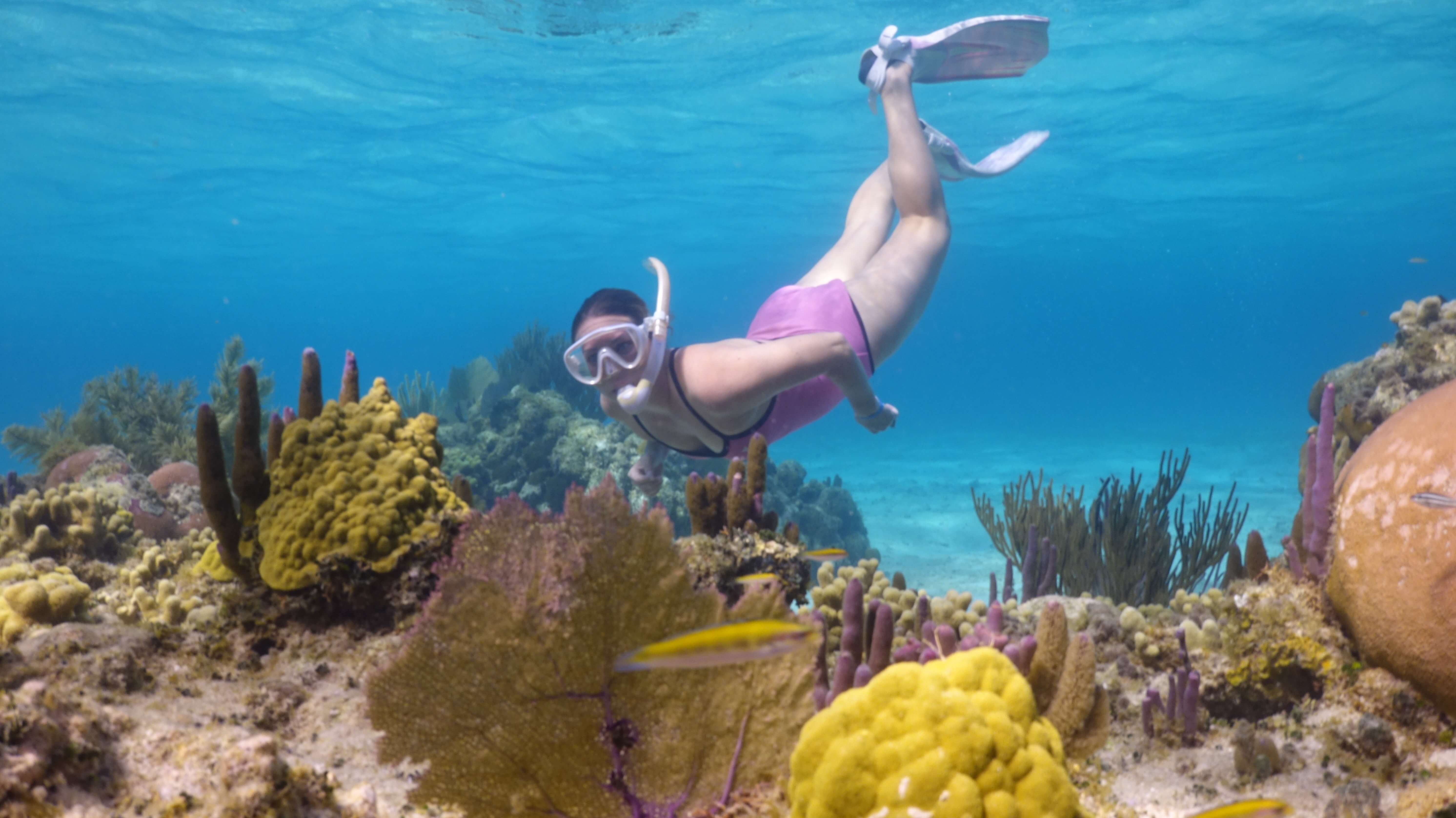 Girl snorkeling on the Roatan reef.