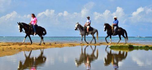 horseback riding on sandy bay