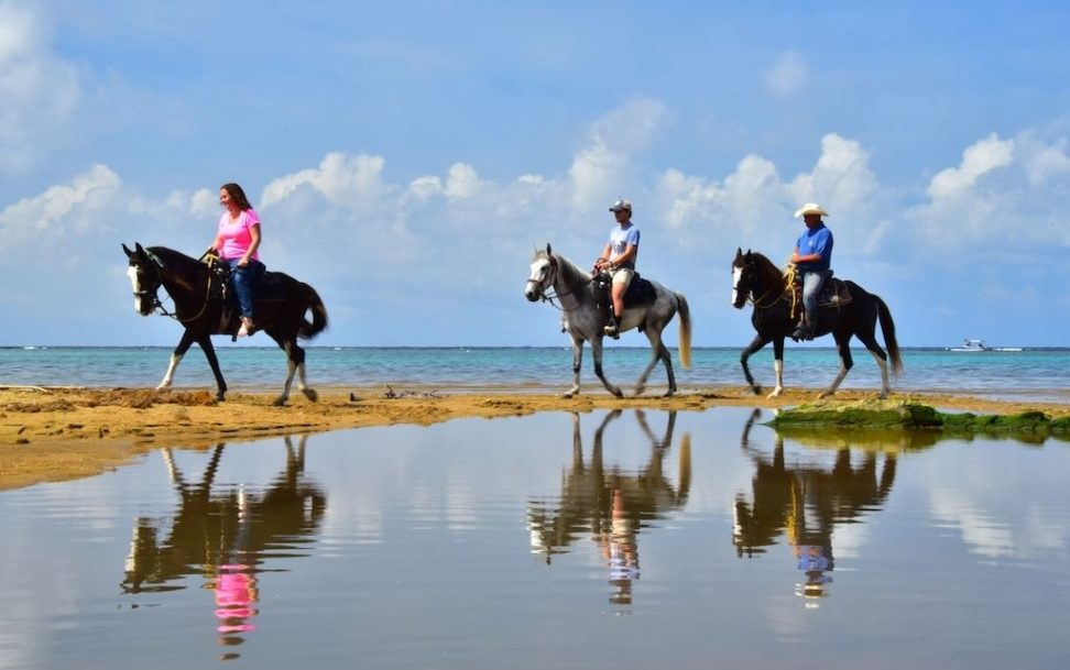horseback riding on sandy bay